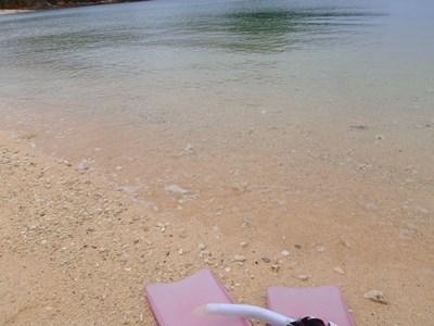 4月 14日 久々にナーマ浜でシュノーケルです。_b0158746_17335846.jpg