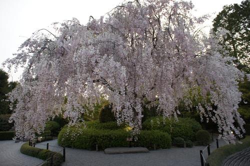 京都に行って参りました_e0142956_945260.jpg