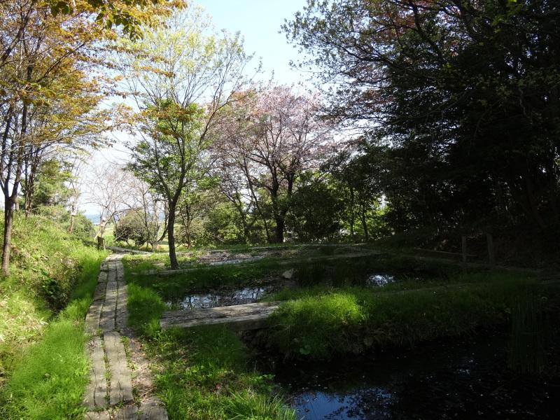 平成26年4月度運営委員会     by     (TATE-misaki)_c0108460_16214246.jpg