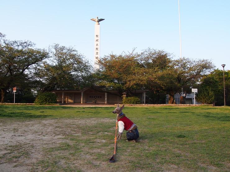 ついでに夜宮公園散歩_f0249710_22325107.jpg