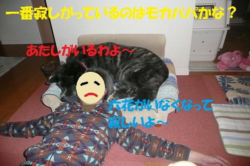 f0121712_16192145.jpg