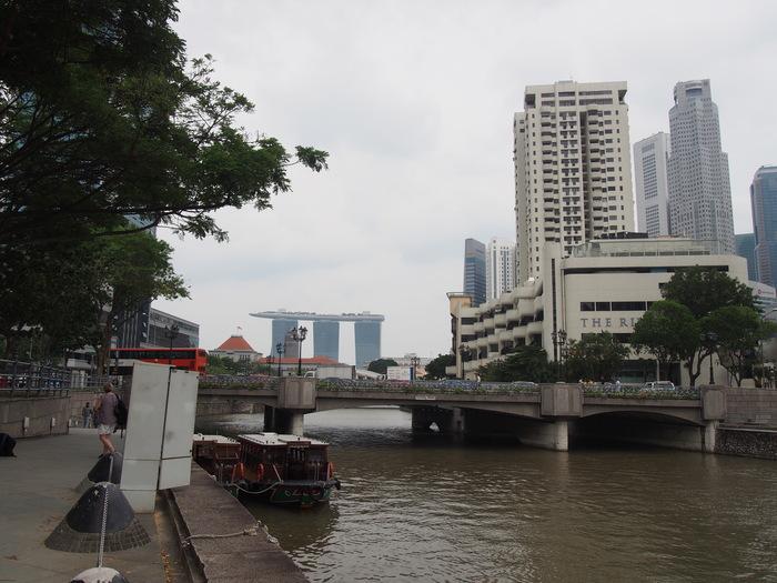 2014 3月 シンガポール (16)  ちょっと長く散歩をしてみました_f0062122_1031296.jpg