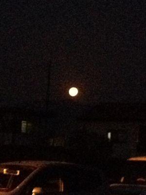 満月。_b0135325_2033691.jpg