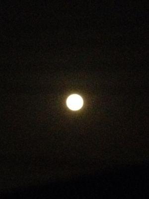 満月。_b0135325_2033739.jpg
