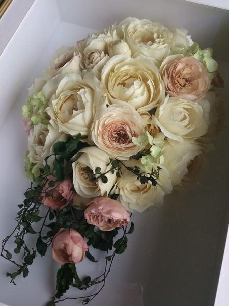 新郎新婦様からのメール ひらまつレゼルブさまへ 感謝_a0042928_1824497.jpg