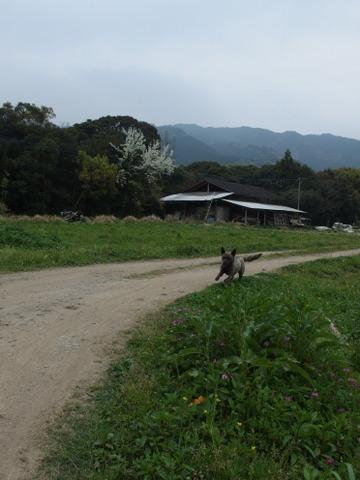 b0199742_20123964.jpg