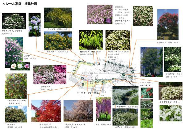 進む植栽計画_f0299108_13431053.jpg