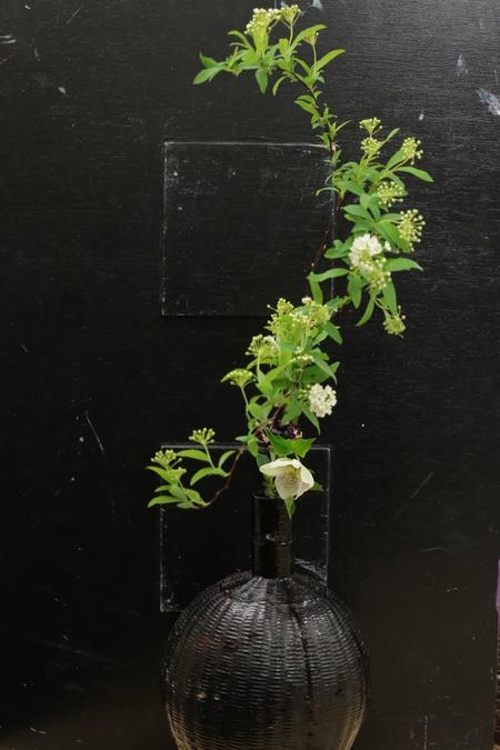 定期レッスン3月 春の花木の花瓶活け後編 一種か二種の花で_a0042928_16435295.jpg
