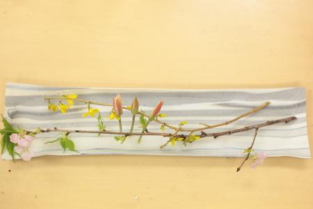 定期レッスン3月 春の花木の花瓶活け後編 一種か二種の花で_a0042928_17232996.jpg