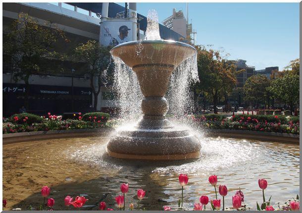 横浜公園チューリップ2014_d0123528_17172969.jpg
