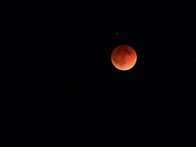 Blood Moon_d0086634_13374237.jpg