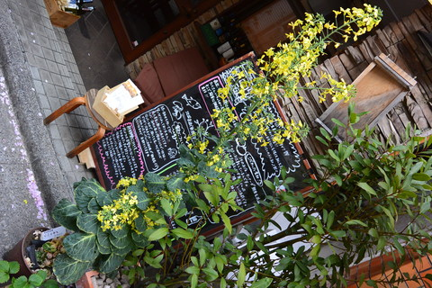 芽キャベツが満開です。まさかこんな姿になるとは・・・。&4月17日(木)のランチメニュー_d0243849_23174389.jpg