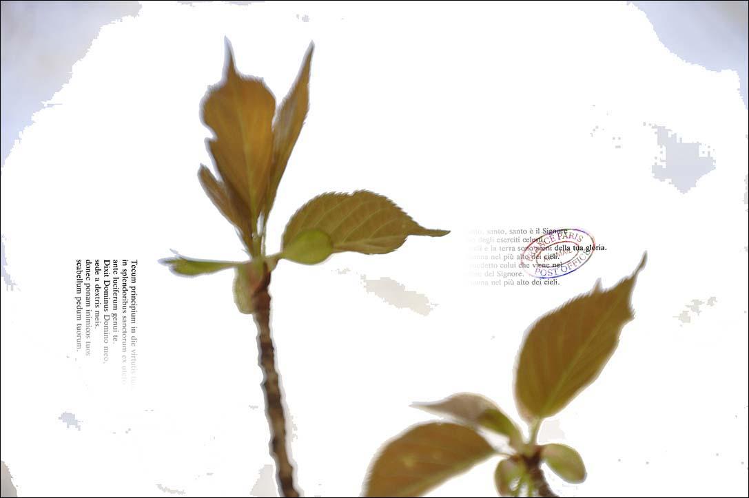 f0198771_23552486.jpg