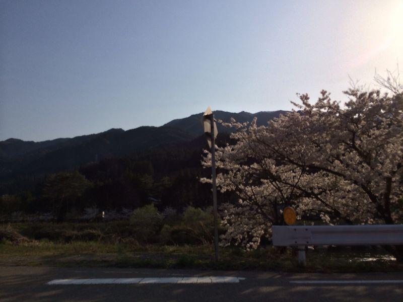 開田高原_e0233674_11202670.jpg