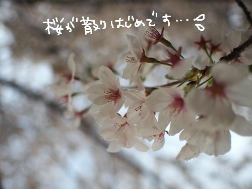 b0092580_1413043.jpg