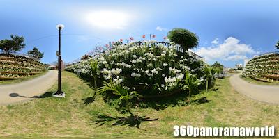 b0132194_1634099.jpg