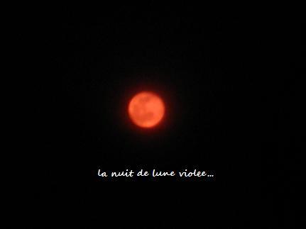 柔らかな透明感☆デルフィニウムトリックブルーと、幻想の月☆_c0098807_1474225.jpg
