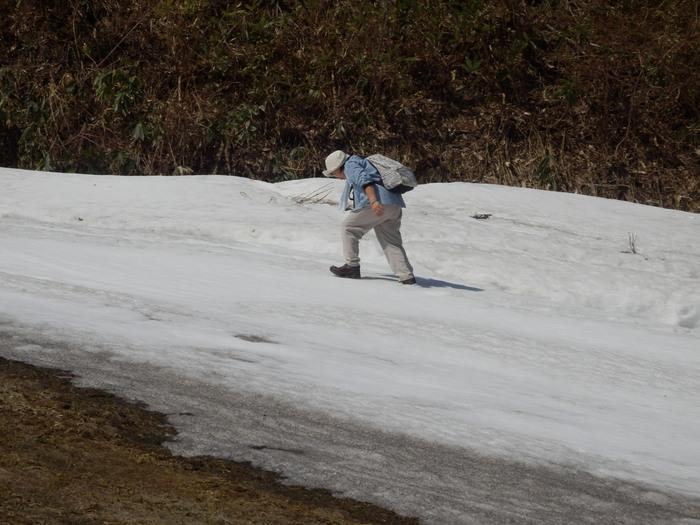畳山(1029m)_f0219710_1624538.jpg