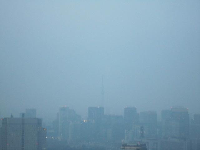 充実した東京出張♪_f0191324_10482316.jpg