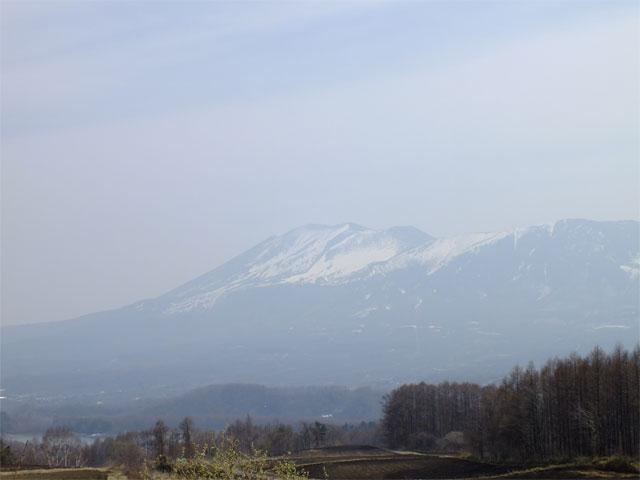 春だよ、草津熱帯圏!_a0179837_1824658.jpg
