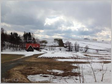 雪がまだある。。_e0326953_21234710.jpg