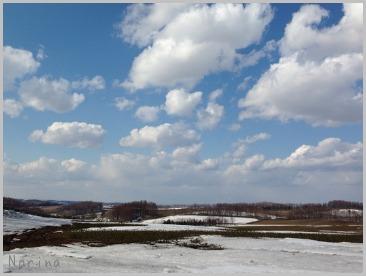 雪がまだある。。_e0326953_2124352.jpg