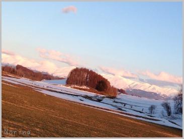 雪がまだある。。_e0326953_21283780.jpg