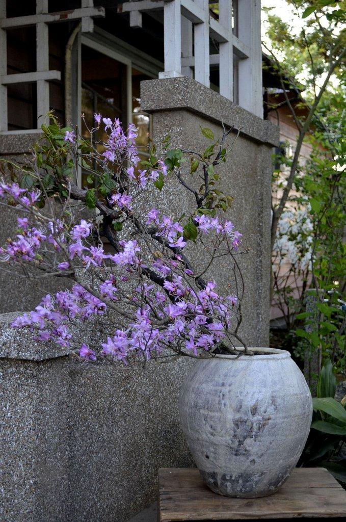 「小野哲平 -その造形-」 壺と花_d0087761_421734.jpg
