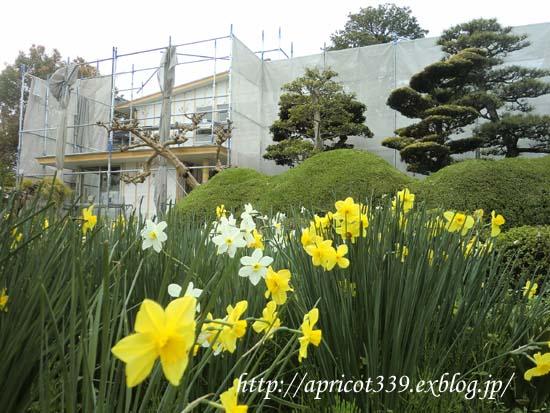 【家づくり】 外壁と二階の天井_c0293787_10124218.jpg