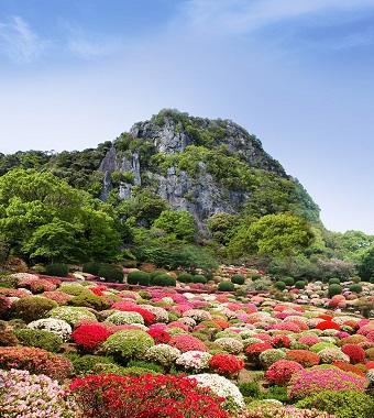 御船山楽園 花まつり _f0040201_915116.jpg