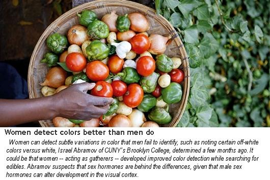 アメリカでは購買決定の85%は女性が決める?! 米国の女性マーケティングの現状_b0007805_23283582.jpg