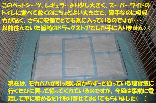f0121712_15213012.jpg