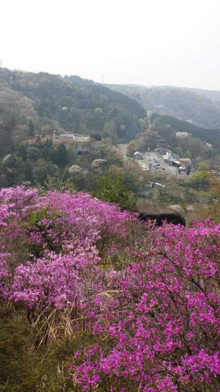 鬼岩公園おまけ_e0155231_095127.jpg