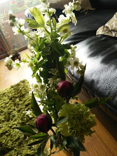 Fioritaは開花・花飾り_f0008555_16353061.jpg