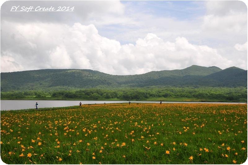 ◆ ニッコウキスゲ咲き乱れる「雄国沼」へ (2009年7月)_d0316868_8402174.jpg