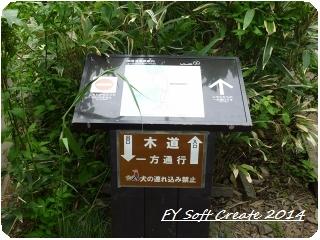 ◆ ニッコウキスゲ咲き乱れる「雄国沼」へ (2009年7月)_d0316868_8482943.jpg