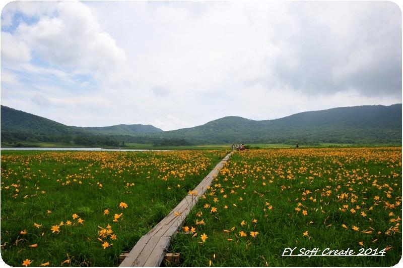 ◆ ニッコウキスゲ咲き乱れる「雄国沼」へ (2009年7月)_d0316868_965488.jpg