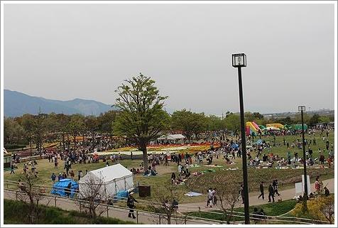 チューリップ祭り。_b0111376_13124545.jpg