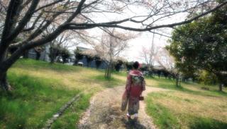 ぽかぽか陽気の中でかけた鹿野町....さすがに城跡の桜...._b0194185_18332263.jpg