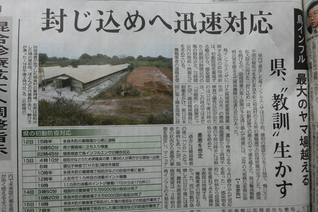 熊本県下で鳥インフルエンザによる被害発生、恐怖の鳥インフルエンザ対策、STAP細胞に夢をのせて_d0181492_0212654.jpg