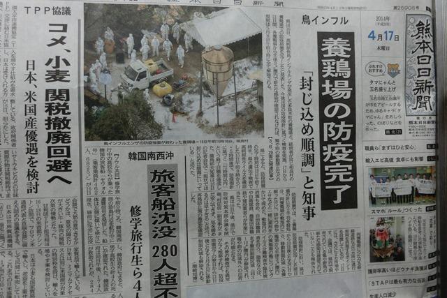熊本県下で鳥インフルエンザによる被害発生、恐怖の鳥インフルエンザ対策、STAP細胞に夢をのせて_d0181492_0215681.jpg