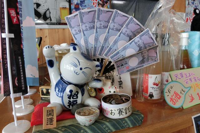 熊本県下で鳥インフルエンザによる被害発生、恐怖の鳥インフルエンザ対策、STAP細胞に夢をのせて_d0181492_0233175.jpg