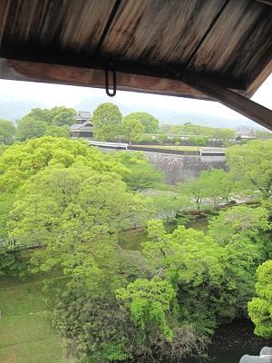 新緑の熊本城_b0228113_13222701.jpg