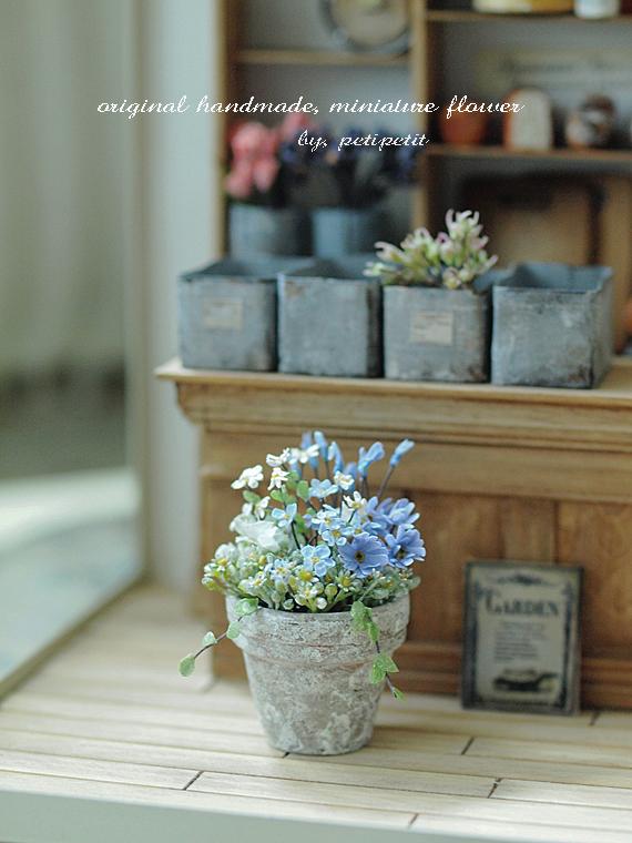 miniature* Flower ちいさな寄せ植え_e0172847_11234058.jpg