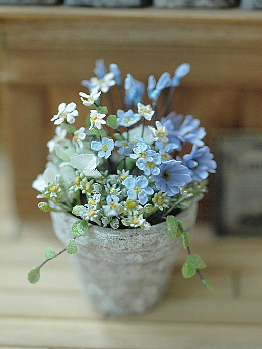 miniature* Flower ちいさな寄せ植え_e0172847_11235189.jpg