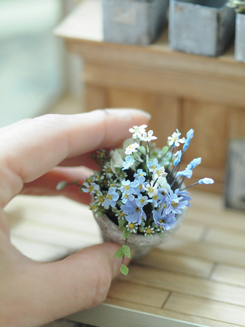 miniature* Flower ちいさな寄せ植え_e0172847_1124157.jpg