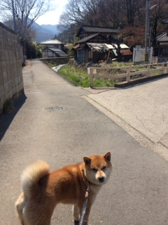 松代散歩 part.1_f0320754_17305911.jpg