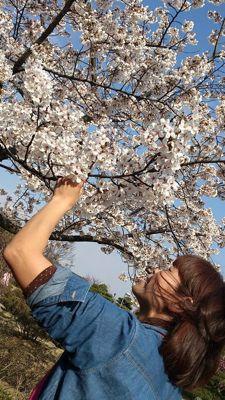 春の写真^ ^_b0213187_1135846.jpg