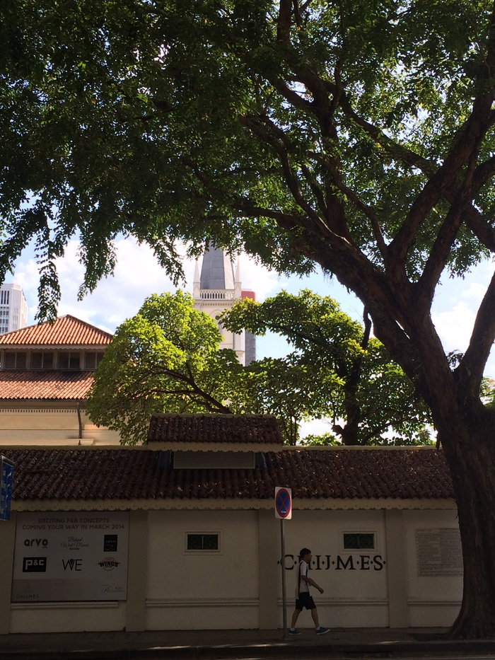 2014 3月 シンガポール (17)  Raffles City 散策_f0062122_13291410.jpg