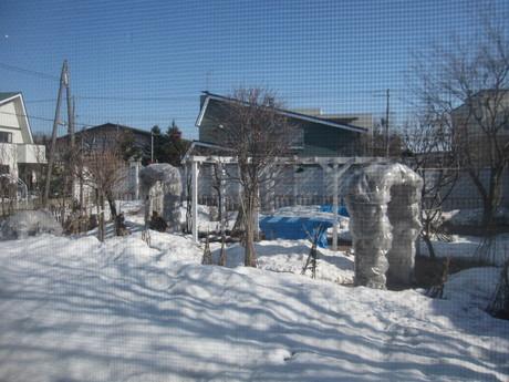 自宅へ戻って庭の様子やKちゃん様子を~_a0279743_16304161.jpg